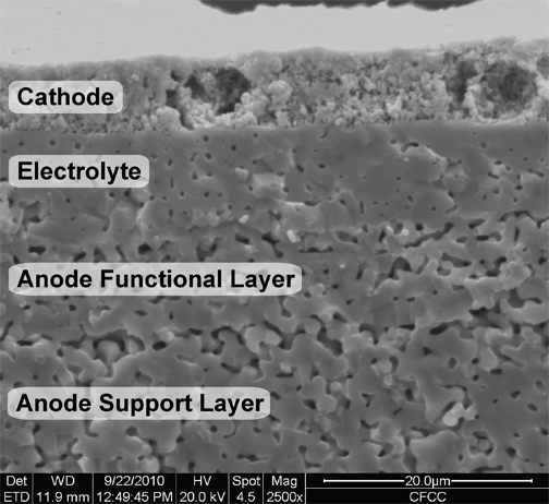 Solid oxide fuel cell component fabrication