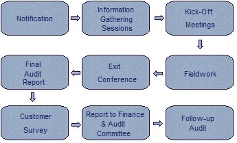 Flow chart for the Internal Audit process